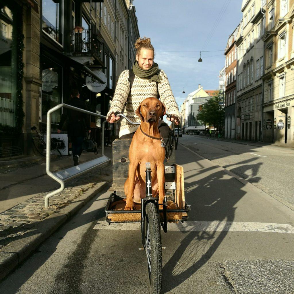 Tra le strade di Copenaghen